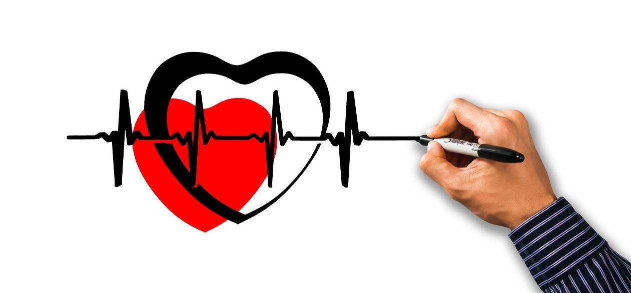 Cómo tu intestino sano tiene relación con la salud cardiovascular